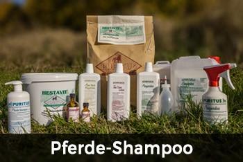 Pferde-Shampoo